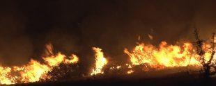 Akarca Yangın